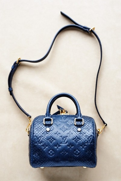 Louis-Vuitton-Speedy-blue-620x929