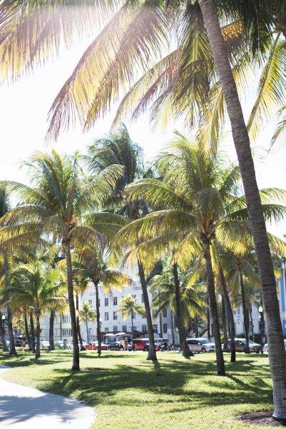 Miami-9133